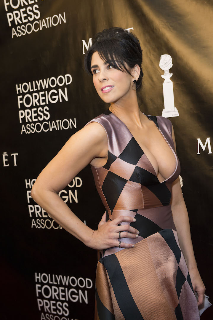 Beverly Hills, CA. August 13, 2015 Hollywood Foreign Press Association presents annual Grants Dinner Thursday night from the Beverly Wilshire Hotel.  The HFPA will present more than $2 million in donations to non-profit entertainment-related organizations and scholarship programs.