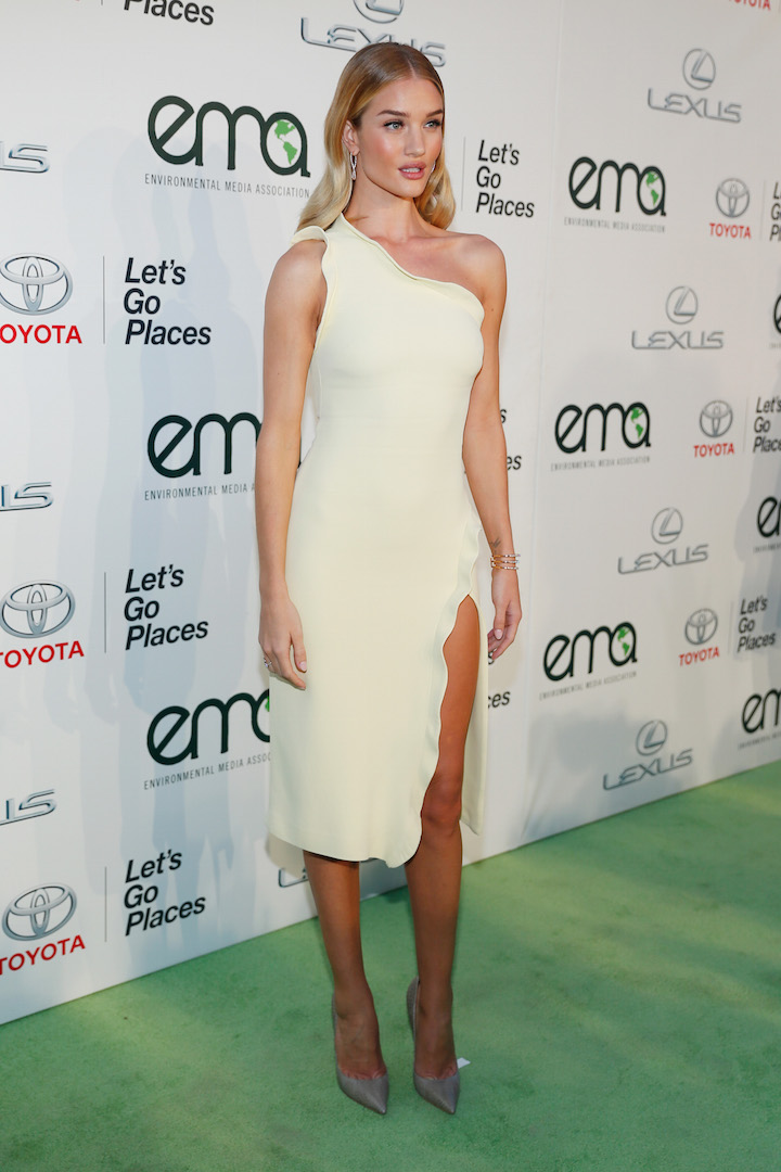 BURBANK, CA - OCTOBER 24:  Actress Rosie Huntington-Whiteley attends the 25th annual EMA Awards presented by Toyota and Lexus and hosted by the Environmental Media Association at Warner Bros. Studios on October 24, 2015 in Burbank, California.  (Photo by Rich Polk/Getty Images for Environmental Media Awards)
