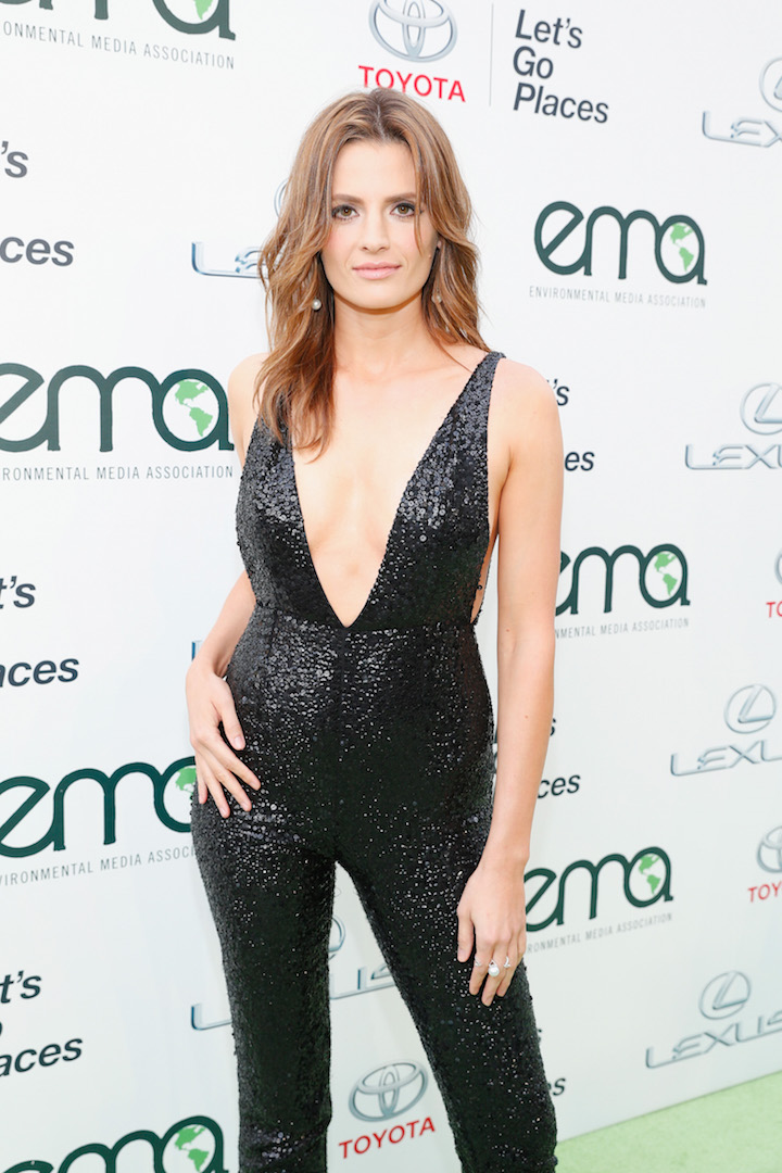 BURBANK, CA - OCTOBER 24:  Actress Stana Katic attends the 25th annual EMA Awards presented by Toyota and Lexus and hosted by the Environmental Media Association at Warner Bros. Studios on October 24, 2015 in Burbank, California.  (Photo by Rich Polk/Getty Images for Environmental Media Awards)