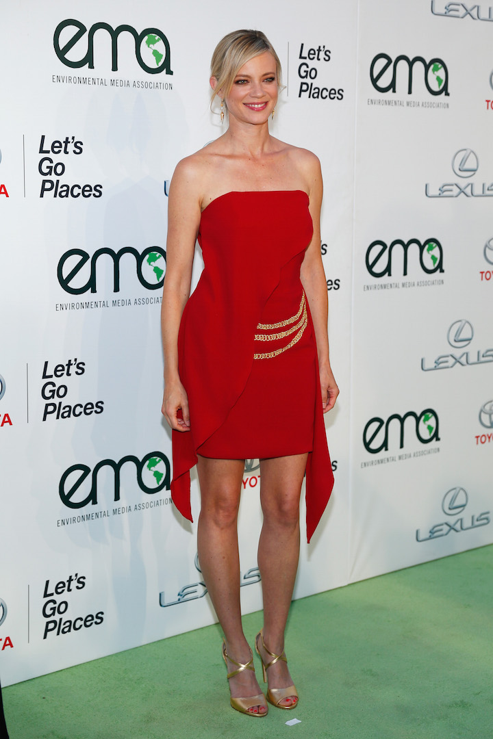 BURBANK, CA - OCTOBER 24:  Actress Amy Smart attends the 25th annual EMA Awards presented by Toyota and Lexus and hosted by the Environmental Media Association at Warner Bros. Studios on October 24, 2015 in Burbank, California.  (Photo by Rich Polk/Getty Images for Environmental Media Awards)